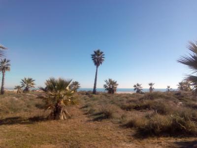 20150104183810-parque-litoral-2.jpg